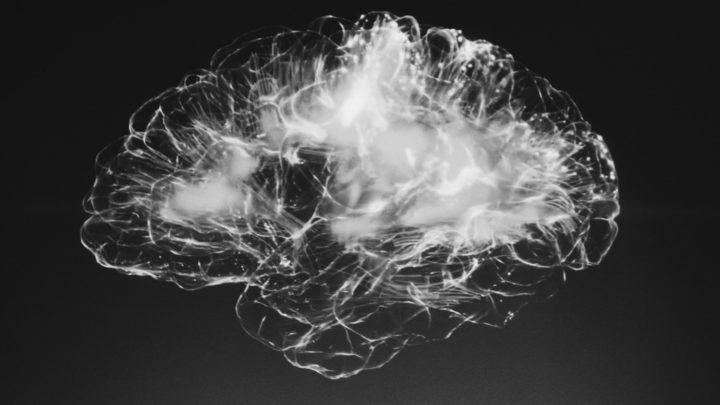 Wizualizacja mózgu