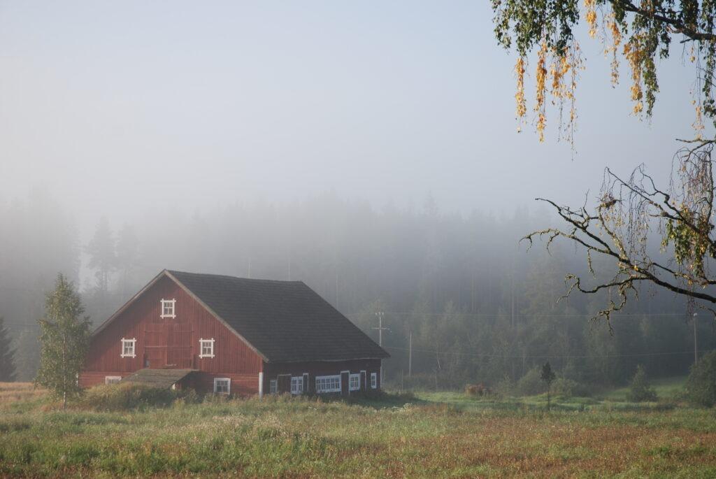 farma wFinlandii